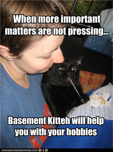 funny-pictures-basement-cat-helps-with-hobbies